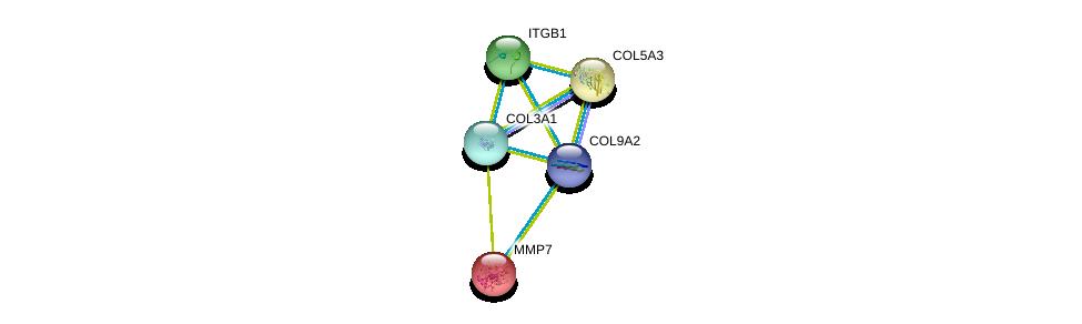 http://string-db.org/version_10/api/image/networkList?limit=0&targetmode=proteins&caller_identity=gene_cards&network_flavor=evidence&identifiers=9606.ENSP00000361834%0d%0a9606.ENSP00000304408%0d%0a9606.ENSP00000304408%0d%0a9606.ENSP00000303351%0d%0a9606.ENSP00000264828%0d%0a9606.ENSP00000260227%0d%0a
