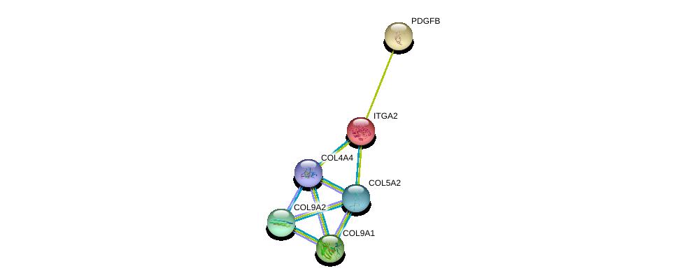 http://string-db.org/version_10/api/image/networkList?limit=0&targetmode=proteins&caller_identity=gene_cards&network_flavor=evidence&identifiers=9606.ENSP00000361834%0d%0a9606.ENSP00000364000%0d%0a9606.ENSP00000330382%0d%0a9606.ENSP00000379866%0d%0a9606.ENSP00000349790%0d%0a9606.ENSP00000296585%0d%0a
