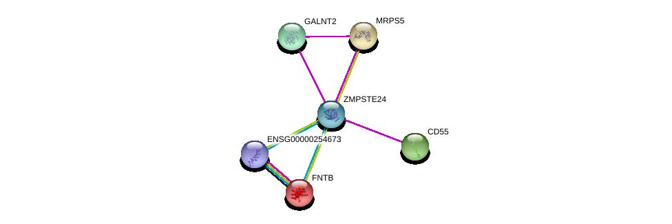 http://string-db.org/version_10/api/image/networkList?limit=0&targetmode=proteins&caller_identity=gene_cards&network_flavor=evidence&identifiers=9606.ENSP00000361845%0d%0a9606.ENSP00000246166%0d%0a9606.ENSP00000435061%0d%0a9606.ENSP00000316333%0d%0a9606.ENSP00000355632%0d%0a9606.ENSP00000272418%0d%0a