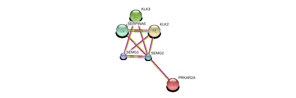 http://string-db.org/version_10/api/image/networkList?limit=0&targetmode=proteins&caller_identity=gene_cards&network_flavor=evidence&identifiers=9606.ENSP00000361855%0d%0a9606.ENSP00000265563%0d%0a9606.ENSP00000313581%0d%0a9606.ENSP00000314151%0d%0a9606.ENSP00000333203%0d%0a9606.ENSP00000361867%0d%0a