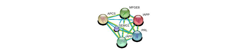 http://string-db.org/version_10/api/image/networkList?limit=0&targetmode=proteins&caller_identity=gene_cards&network_flavor=evidence&identifiers=9606.ENSP00000361867%0d%0a9606.ENSP00000255040%0d%0a9606.ENSP00000240652%0d%0a9606.ENSP00000268150%0d%0a9606.ENSP00000284981%0d%0a9606.ENSP00000302150%0d%0a