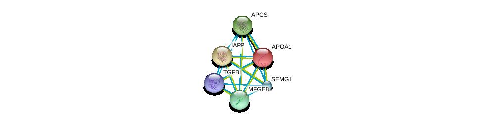 http://string-db.org/version_10/api/image/networkList?limit=0&targetmode=proteins&caller_identity=gene_cards&network_flavor=evidence&identifiers=9606.ENSP00000361867%0d%0a9606.ENSP00000268150%0d%0a9606.ENSP00000255040%0d%0a9606.ENSP00000240652%0d%0a9606.ENSP00000236850%0d%0a9606.ENSP00000416330%0d%0a