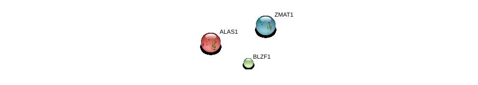 http://string-db.org/version_10/api/image/networkList?limit=0&targetmode=proteins&caller_identity=gene_cards&network_flavor=evidence&identifiers=9606.ENSP00000361868%0d%0a9606.ENSP00000327541%0d%0a9606.ENSP00000309259%0d%0a
