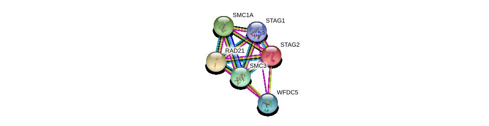 http://string-db.org/version_10/api/image/networkList?limit=0&targetmode=proteins&caller_identity=gene_cards&network_flavor=evidence&identifiers=9606.ENSP00000361875%0d%0a9606.ENSP00000354720%0d%0a9606.ENSP00000297338%0d%0a9606.ENSP00000323421%0d%0a9606.ENSP00000218089%0d%0a9606.ENSP00000372689%0d%0a