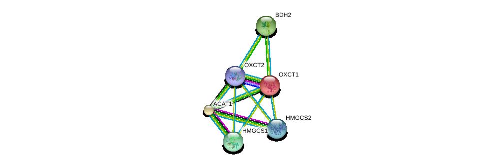 http://string-db.org/version_10/api/image/networkList?limit=0&targetmode=proteins&caller_identity=gene_cards&network_flavor=evidence&identifiers=9606.ENSP00000361914%0d%0a9606.ENSP00000196371%0d%0a9606.ENSP00000296424%0d%0a9606.ENSP00000265838%0d%0a9606.ENSP00000358414%0d%0a9606.ENSP00000322706%0d%0a