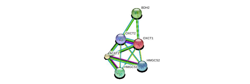 http://string-db.org/version_10/api/image/networkList?limit=0&targetmode=proteins&caller_identity=gene_cards&network_flavor=evidence&identifiers=9606.ENSP00000361914%0d%0a9606.ENSP00000196371%0d%0a9606.ENSP00000358414%0d%0a9606.ENSP00000265838%0d%0a9606.ENSP00000296424%0d%0a9606.ENSP00000322706%0d%0a