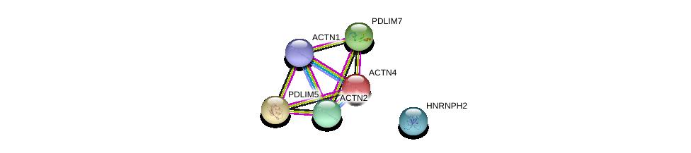 http://string-db.org/version_10/api/image/networkList?limit=0&targetmode=proteins&caller_identity=gene_cards&network_flavor=evidence&identifiers=9606.ENSP00000361927%0d%0a9606.ENSP00000252699%0d%0a9606.ENSP00000321746%0d%0a9606.ENSP00000348099%0d%0a9606.ENSP00000355537%0d%0a9606.ENSP00000377941%0d%0a