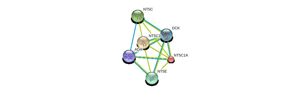 http://string-db.org/version_10/api/image/networkList?limit=0&targetmode=proteins&caller_identity=gene_cards&network_flavor=evidence&identifiers=9606.ENSP00000361965%0d%0a9606.ENSP00000245552%0d%0a9606.ENSP00000235628%0d%0a9606.ENSP00000242210%0d%0a9606.ENSP00000257770%0d%0a9606.ENSP00000286648%0d%0a
