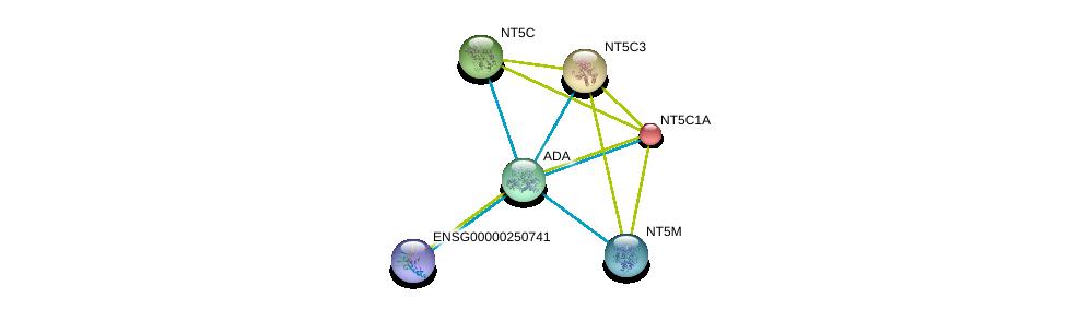 http://string-db.org/version_10/api/image/networkList?limit=0&targetmode=proteins&caller_identity=gene_cards&network_flavor=evidence&identifiers=9606.ENSP00000361965%0d%0a9606.ENSP00000245552%0d%0a9606.ENSP00000242210%0d%0a9606.ENSP00000235628%0d%0a9606.ENSP00000433415%0d%0a9606.ENSP00000373674%0d%0a