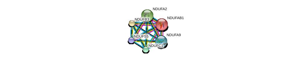 http://string-db.org/version_10/api/image/networkList?limit=0&targetmode=proteins&caller_identity=gene_cards&network_flavor=evidence&identifiers=9606.ENSP00000362058%0d%0a9606.ENSP00000252102%0d%0a9606.ENSP00000007516%0d%0a9606.ENSP00000237889%0d%0a9606.ENSP00000265500%0d%0a9606.ENSP00000266544%0d%0a