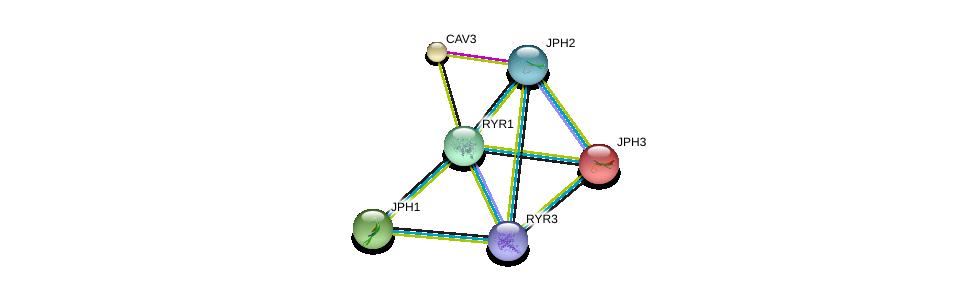 http://string-db.org/version_10/api/image/networkList?limit=0&targetmode=proteins&caller_identity=gene_cards&network_flavor=evidence&identifiers=9606.ENSP00000362071%0d%0a9606.ENSP00000341940%0d%0a9606.ENSP00000284262%0d%0a9606.ENSP00000344488%0d%0a9606.ENSP00000352608%0d%0a9606.ENSP00000373884%0d%0a