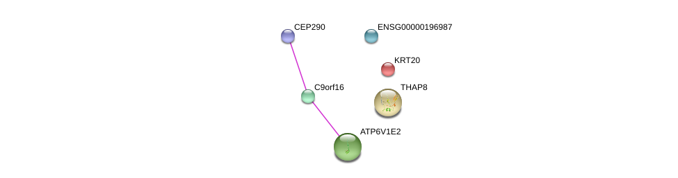 http://string-db.org/version_10/api/image/networkList?limit=0&targetmode=proteins&caller_identity=gene_cards&network_flavor=evidence&identifiers=9606.ENSP00000362085%0d%0a9606.ENSP00000304891%0d%0a9606.ENSP00000167588%0d%0a9606.ENSP00000292894%0d%0a9606.ENSP00000389835%0d%0a9606.ENSP00000448012%0d%0a