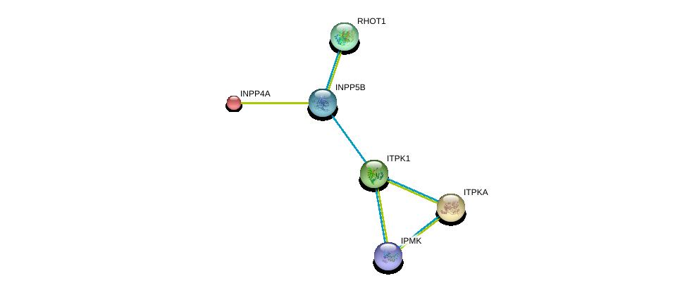 http://string-db.org/version_10/api/image/networkList?limit=0&targetmode=proteins&caller_identity=gene_cards&network_flavor=evidence&identifiers=9606.ENSP00000362115%0d%0a9606.ENSP00000363046%0d%0a9606.ENSP00000351132%0d%0a9606.ENSP00000074304%0d%0a9606.ENSP00000267615%0d%0a9606.ENSP00000260386%0d%0a