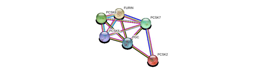 http://string-db.org/version_10/api/image/networkList?limit=0&targetmode=proteins&caller_identity=gene_cards&network_flavor=evidence&identifiers=9606.ENSP00000362116%0d%0a9606.ENSP00000446280%0d%0a9606.ENSP00000305056%0d%0a9606.ENSP00000268171%0d%0a9606.ENSP00000262545%0d%0a9606.ENSP00000325917%0d%0a