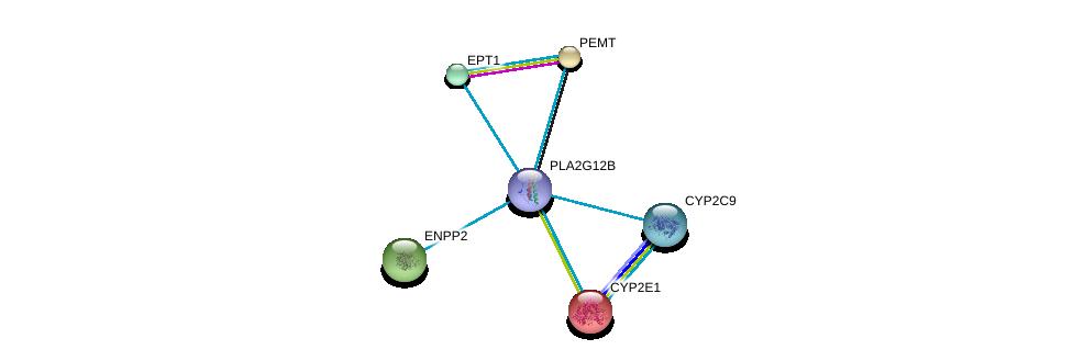 http://string-db.org/version_10/api/image/networkList?limit=0&targetmode=proteins&caller_identity=gene_cards&network_flavor=evidence&identifiers=9606.ENSP00000362123%0d%0a9606.ENSP00000252945%0d%0a9606.ENSP00000255389%0d%0a9606.ENSP00000259486%0d%0a9606.ENSP00000260585%0d%0a9606.ENSP00000260682%0d%0a