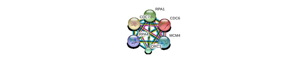 http://string-db.org/version_10/api/image/networkList?limit=0&targetmode=proteins&caller_identity=gene_cards&network_flavor=evidence&identifiers=9606.ENSP00000362131%0d%0a9606.ENSP00000254719%0d%0a9606.ENSP00000209728%0d%0a9606.ENSP00000234626%0d%0a9606.ENSP00000257789%0d%0a9606.ENSP00000262105%0d%0a