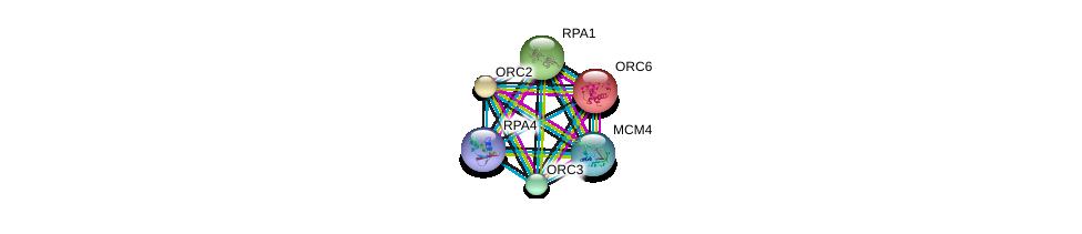 http://string-db.org/version_10/api/image/networkList?limit=0&targetmode=proteins&caller_identity=gene_cards&network_flavor=evidence&identifiers=9606.ENSP00000362131%0d%0a9606.ENSP00000254719%0d%0a9606.ENSP00000219097%0d%0a9606.ENSP00000234296%0d%0a9606.ENSP00000257789%0d%0a9606.ENSP00000262105%0d%0a