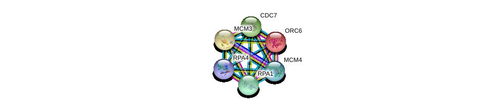 http://string-db.org/version_10/api/image/networkList?limit=0&targetmode=proteins&caller_identity=gene_cards&network_flavor=evidence&identifiers=9606.ENSP00000362131%0d%0a9606.ENSP00000254719%0d%0a9606.ENSP00000234626%0d%0a9606.ENSP00000219097%0d%0a9606.ENSP00000229854%0d%0a9606.ENSP00000262105%0d%0a