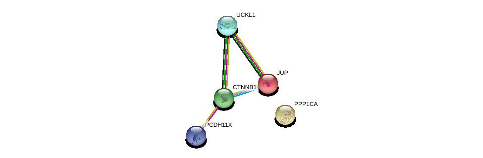 http://string-db.org/version_10/api/image/networkList?limit=0&targetmode=proteins&caller_identity=gene_cards&network_flavor=evidence&identifiers=9606.ENSP00000362186%0d%0a9606.ENSP00000326031%0d%0a9606.ENSP00000346155%0d%0a9606.ENSP00000346155%0d%0a9606.ENSP00000344456%0d%0a9606.ENSP00000311113%0d%0a