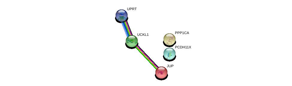 http://string-db.org/version_10/api/image/networkList?limit=0&targetmode=proteins&caller_identity=gene_cards&network_flavor=evidence&identifiers=9606.ENSP00000362186%0d%0a9606.ENSP00000326031%0d%0a9606.ENSP00000346155%0d%0a9606.ENSP00000346155%0d%0a9606.ENSP00000362481%0d%0a9606.ENSP00000311113%0d%0a