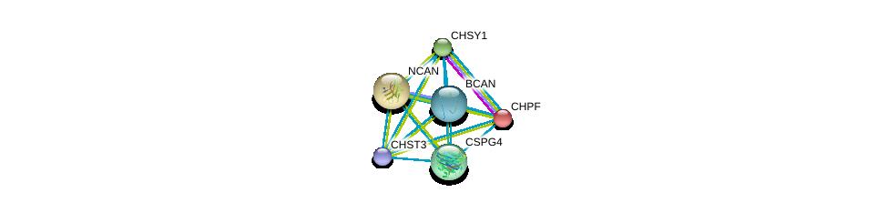 http://string-db.org/version_10/api/image/networkList?limit=0&targetmode=proteins&caller_identity=gene_cards&network_flavor=evidence&identifiers=9606.ENSP00000362207%0d%0a9606.ENSP00000252575%0d%0a9606.ENSP00000254190%0d%0a9606.ENSP00000312506%0d%0a9606.ENSP00000331210%0d%0a9606.ENSP00000243776%0d%0a