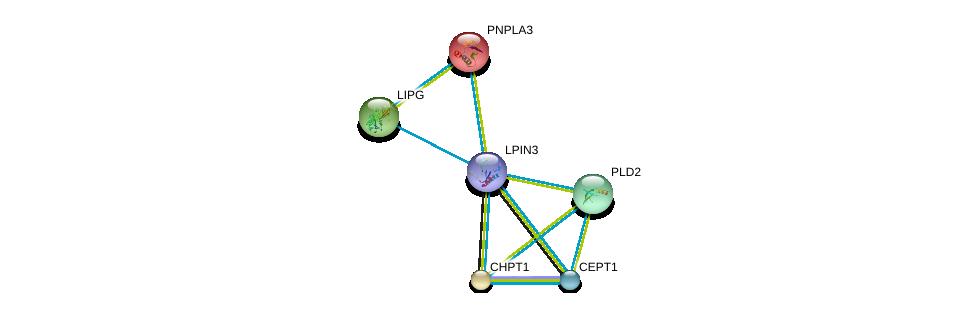 http://string-db.org/version_10/api/image/networkList?limit=0&targetmode=proteins&caller_identity=gene_cards&network_flavor=evidence&identifiers=9606.ENSP00000362354%0d%0a9606.ENSP00000229266%0d%0a9606.ENSP00000261292%0d%0a9606.ENSP00000263088%0d%0a9606.ENSP00000216180%0d%0a9606.ENSP00000349696%0d%0a