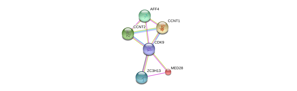http://string-db.org/version_10/api/image/networkList?limit=0&targetmode=proteins&caller_identity=gene_cards&network_flavor=evidence&identifiers=9606.ENSP00000362361%0d%0a9606.ENSP00000261900%0d%0a9606.ENSP00000264157%0d%0a9606.ENSP00000265343%0d%0a9606.ENSP00000237380%0d%0a9606.ENSP00000282007%0d%0a