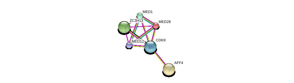 http://string-db.org/version_10/api/image/networkList?limit=0&targetmode=proteins&caller_identity=gene_cards&network_flavor=evidence&identifiers=9606.ENSP00000362361%0d%0a9606.ENSP00000265343%0d%0a9606.ENSP00000300651%0d%0a9606.ENSP00000282007%0d%0a9606.ENSP00000237380%0d%0a9606.ENSP00000363193%0d%0a