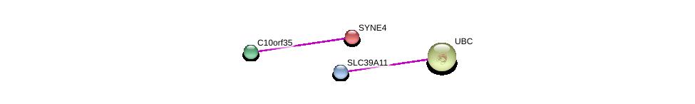 http://string-db.org/version_10/api/image/networkList?limit=0&targetmode=proteins&caller_identity=gene_cards&network_flavor=evidence&identifiers=9606.ENSP00000362376%0d%0a9606.ENSP00000316130%0d%0a9606.ENSP00000445829%0d%0a9606.ENSP00000344818%0d%0a
