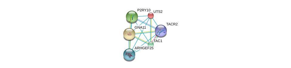 http://string-db.org/version_10/api/image/networkList?limit=0&targetmode=proteins&caller_identity=gene_cards&network_flavor=evidence&identifiers=9606.ENSP00000362403%0d%0a9606.ENSP00000321106%0d%0a9606.ENSP00000335560%0d%0a9606.ENSP00000054668%0d%0a9606.ENSP00000078429%0d%0a9606.ENSP00000171757%0d%0a
