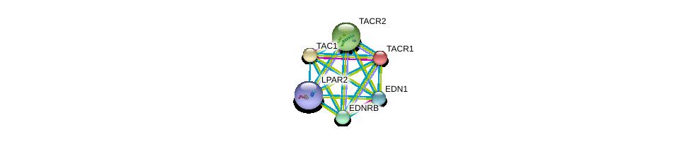 http://string-db.org/version_10/api/image/networkList?limit=0&targetmode=proteins&caller_identity=gene_cards&network_flavor=evidence&identifiers=9606.ENSP00000362403%0d%0a9606.ENSP00000321106%0d%0a9606.ENSP00000368683%0d%0a9606.ENSP00000366416%0d%0a9606.ENSP00000384665%0d%0a9606.ENSP00000303522%0d%0a