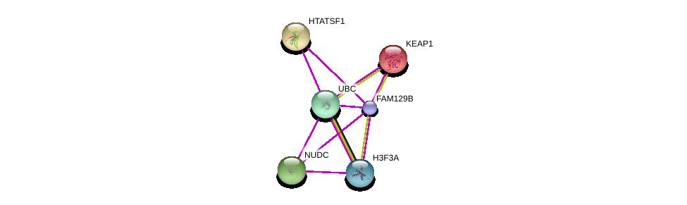 http://string-db.org/version_10/api/image/networkList?limit=0&targetmode=proteins&caller_identity=gene_cards&network_flavor=evidence&identifiers=9606.ENSP00000362409%0d%0a9606.ENSP00000344818%0d%0a9606.ENSP00000171111%0d%0a9606.ENSP00000218364%0d%0a9606.ENSP00000319664%0d%0a9606.ENSP00000355778%0d%0a