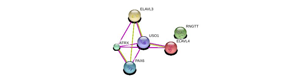 http://string-db.org/version_10/api/image/networkList?limit=0&targetmode=proteins&caller_identity=gene_cards&network_flavor=evidence&identifiers=9606.ENSP00000362441%0d%0a9606.ENSP00000358497%0d%0a9606.ENSP00000440586%0d%0a9606.ENSP00000368401%0d%0a9606.ENSP00000352162%0d%0a9606.ENSP00000349594%0d%0a