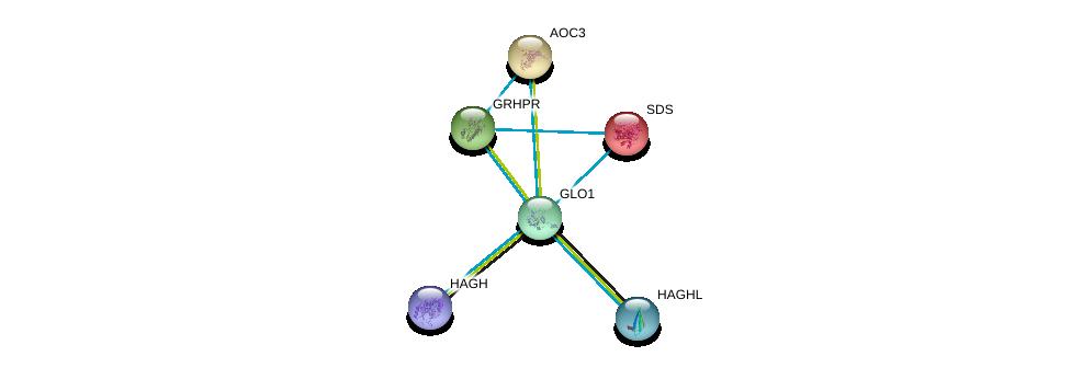 http://string-db.org/version_10/api/image/networkList?limit=0&targetmode=proteins&caller_identity=gene_cards&network_flavor=evidence&identifiers=9606.ENSP00000362463%0d%0a9606.ENSP00000374353%0d%0a9606.ENSP00000313432%0d%0a9606.ENSP00000380514%0d%0a9606.ENSP00000257549%0d%0a9606.ENSP00000312326%0d%0a