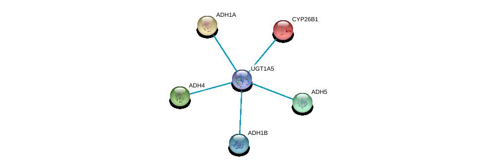 http://string-db.org/version_10/api/image/networkList?limit=0&targetmode=proteins&caller_identity=gene_cards&network_flavor=evidence&identifiers=9606.ENSP00000362513%0d%0a9606.ENSP00000209668%0d%0a9606.ENSP00000265512%0d%0a9606.ENSP00000296412%0d%0a9606.ENSP00000306606%0d%0a9606.ENSP00000001146%0d%0a