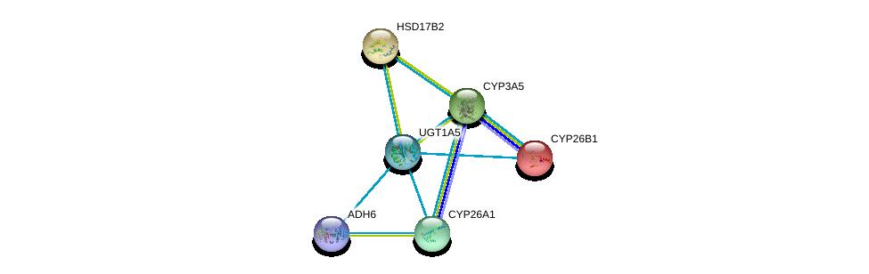 http://string-db.org/version_10/api/image/networkList?limit=0&targetmode=proteins&caller_identity=gene_cards&network_flavor=evidence&identifiers=9606.ENSP00000362513%0d%0a9606.ENSP00000378359%0d%0a9606.ENSP00000001146%0d%0a9606.ENSP00000199936%0d%0a9606.ENSP00000222982%0d%0a9606.ENSP00000224356%0d%0a