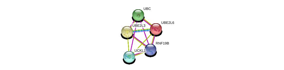 http://string-db.org/version_10/api/image/networkList?limit=0&targetmode=proteins&caller_identity=gene_cards&network_flavor=evidence&identifiers=9606.ENSP00000362555%0d%0a9606.ENSP00000344259%0d%0a9606.ENSP00000287156%0d%0a9606.ENSP00000344818%0d%0a9606.ENSP00000346155%0d%0a9606.ENSP00000346155%0d%0a