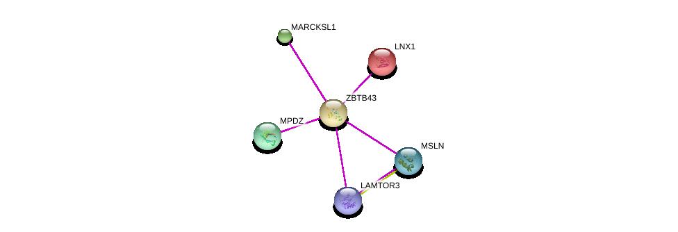 http://string-db.org/version_10/api/image/networkList?limit=0&targetmode=proteins&caller_identity=gene_cards&network_flavor=evidence&identifiers=9606.ENSP00000362556%0d%0a9606.ENSP00000372313%0d%0a9606.ENSP00000263925%0d%0a9606.ENSP00000370410%0d%0a9606.ENSP00000362638%0d%0a9606.ENSP00000424183%0d%0a