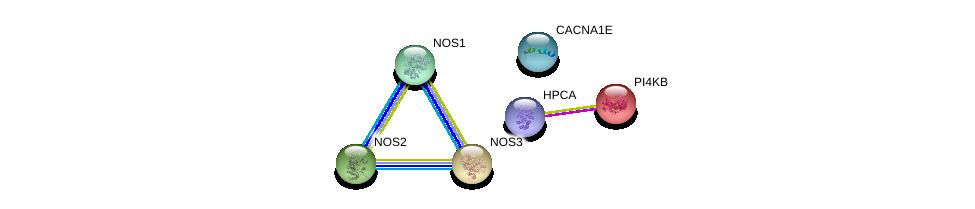http://string-db.org/version_10/api/image/networkList?limit=0&targetmode=proteins&caller_identity=gene_cards&network_flavor=evidence&identifiers=9606.ENSP00000362566%0d%0a9606.ENSP00000297494%0d%0a9606.ENSP00000327251%0d%0a9606.ENSP00000337459%0d%0a9606.ENSP00000271657%0d%0a9606.ENSP00000356545%0d%0a