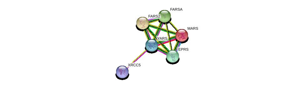 http://string-db.org/version_10/api/image/networkList?limit=0&targetmode=proteins&caller_identity=gene_cards&network_flavor=evidence&identifiers=9606.ENSP00000362576%0d%0a9606.ENSP00000355890%0d%0a9606.ENSP00000274680%0d%0a9606.ENSP00000262027%0d%0a9606.ENSP00000320309%0d%0a9606.ENSP00000375977%0d%0a