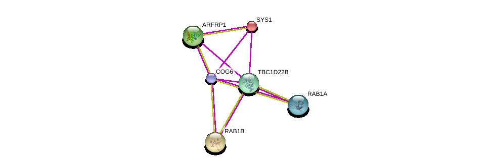 http://string-db.org/version_10/api/image/networkList?limit=0&targetmode=proteins&caller_identity=gene_cards&network_flavor=evidence&identifiers=9606.ENSP00000362590%0d%0a9606.ENSP00000397441%0d%0a9606.ENSP00000243918%0d%0a9606.ENSP00000326884%0d%0a9606.ENSP00000387286%0d%0a9606.ENSP00000310226%0d%0a