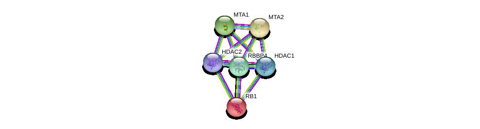 http://string-db.org/version_10/api/image/networkList?limit=0&targetmode=proteins&caller_identity=gene_cards&network_flavor=evidence&identifiers=9606.ENSP00000362592%0d%0a9606.ENSP00000278823%0d%0a9606.ENSP00000362649%0d%0a9606.ENSP00000430432%0d%0a9606.ENSP00000333633%0d%0a9606.ENSP00000267163%0d%0a