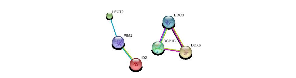 http://string-db.org/version_10/api/image/networkList?limit=0&targetmode=proteins&caller_identity=gene_cards&network_flavor=evidence&identifiers=9606.ENSP00000362608%0d%0a9606.ENSP00000234091%0d%0a9606.ENSP00000274507%0d%0a9606.ENSP00000264018%0d%0a9606.ENSP00000280665%0d%0a9606.ENSP00000320503%0d%0a