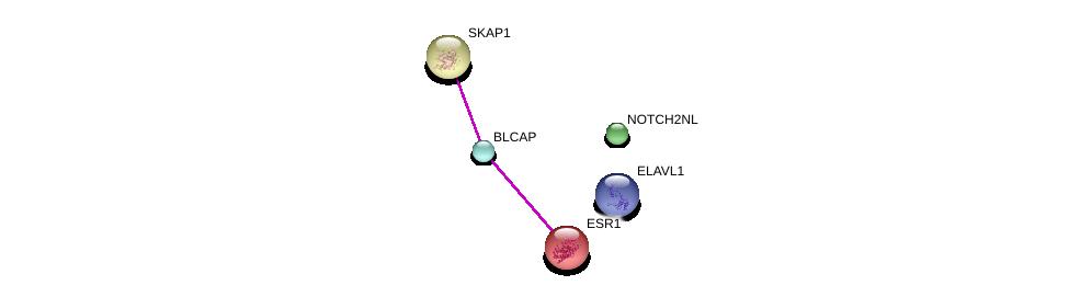 http://string-db.org/version_10/api/image/networkList?limit=0&targetmode=proteins&caller_identity=gene_cards&network_flavor=evidence&identifiers=9606.ENSP00000362637%0d%0a9606.ENSP00000338171%0d%0a9606.ENSP00000206249%0d%0a9606.ENSP00000385269%0d%0a9606.ENSP00000354929%0d%0a