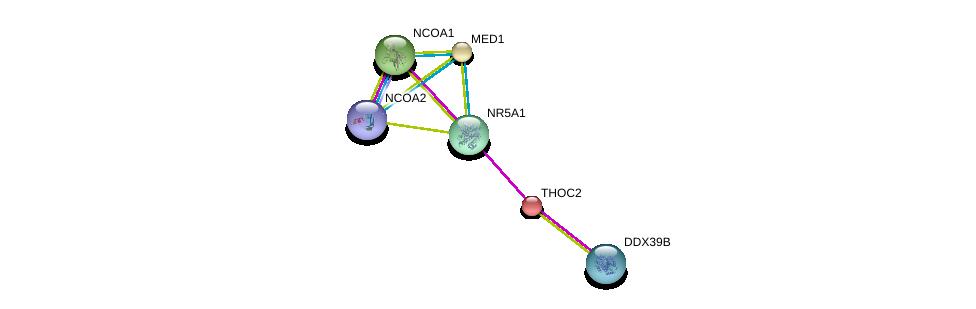 http://string-db.org/version_10/api/image/networkList?limit=0&targetmode=proteins&caller_identity=gene_cards&network_flavor=evidence&identifiers=9606.ENSP00000362690%0d%0a9606.ENSP00000399968%0d%0a9606.ENSP00000300651%0d%0a9606.ENSP00000320940%0d%0a9606.ENSP00000245838%0d%0a9606.ENSP00000379475%0d%0a