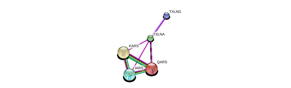 http://string-db.org/version_10/api/image/networkList?limit=0&targetmode=proteins&caller_identity=gene_cards&network_flavor=evidence&identifiers=9606.ENSP00000362711%0d%0a9606.ENSP00000364794%0d%0a9606.ENSP00000307567%0d%0a9606.ENSP00000307567%0d%0a9606.ENSP00000325448%0d%0a9606.ENSP00000369465%0d%0a