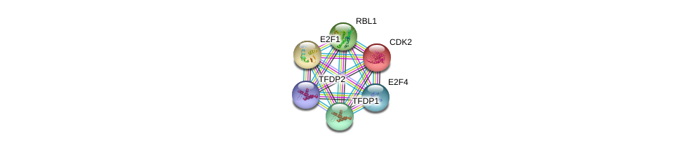 http://string-db.org/version_10/api/image/networkList?limit=0&targetmode=proteins&caller_identity=gene_cards&network_flavor=evidence&identifiers=9606.ENSP00000362768%0d%0a9606.ENSP00000364519%0d%0a9606.ENSP00000420616%0d%0a9606.ENSP00000368686%0d%0a9606.ENSP00000266970%0d%0a9606.ENSP00000345571%0d%0a
