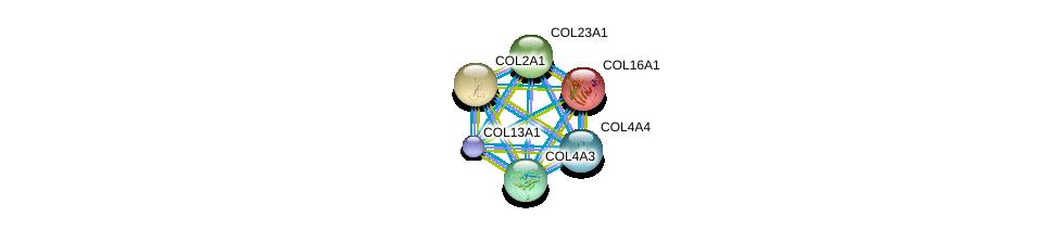 http://string-db.org/version_10/api/image/networkList?limit=0&targetmode=proteins&caller_identity=gene_cards&network_flavor=evidence&identifiers=9606.ENSP00000362776%0d%0a9606.ENSP00000369889%0d%0a9606.ENSP00000375069%0d%0a9606.ENSP00000379823%0d%0a9606.ENSP00000379866%0d%0a9606.ENSP00000381949%0d%0a