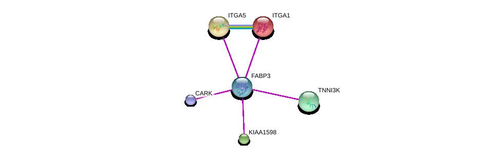 http://string-db.org/version_10/api/image/networkList?limit=0&targetmode=proteins&caller_identity=gene_cards&network_flavor=evidence&identifiers=9606.ENSP00000362817%0d%0a9606.ENSP00000347532%0d%0a9606.ENSP00000359928%0d%0a9606.ENSP00000450895%0d%0a9606.ENSP00000293379%0d%0a9606.ENSP00000282588%0d%0a
