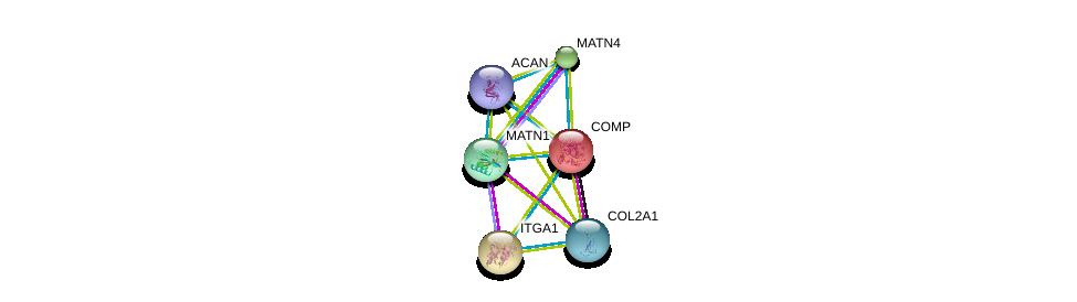 http://string-db.org/version_10/api/image/networkList?limit=0&targetmode=proteins&caller_identity=gene_cards&network_flavor=evidence&identifiers=9606.ENSP00000362870%0d%0a9606.ENSP00000222271%0d%0a9606.ENSP00000387356%0d%0a9606.ENSP00000282588%0d%0a9606.ENSP00000369889%0d%0a9606.ENSP00000343164%0d%0a